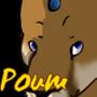Poum, le puma du nord -